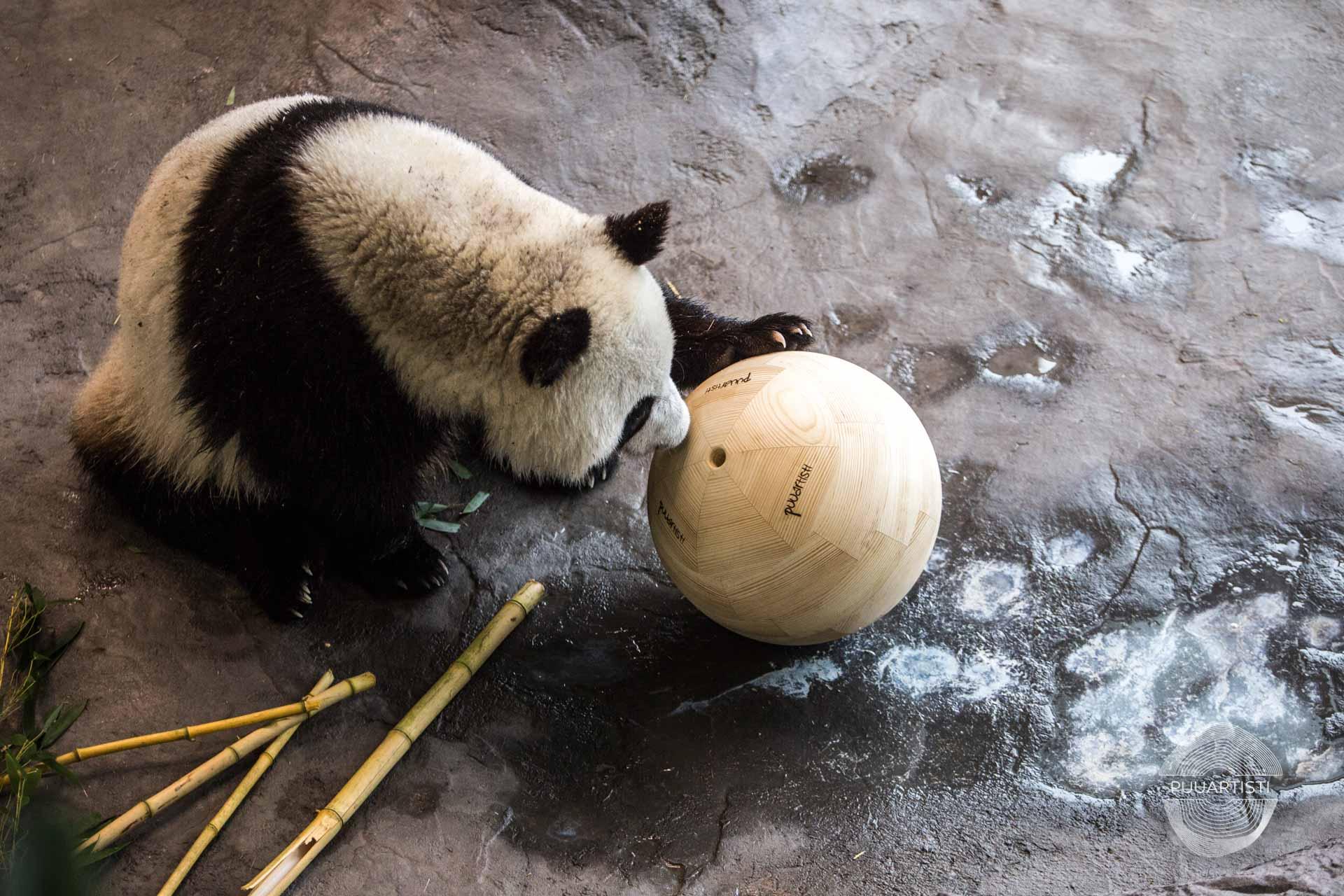 Puuartisti Panda balls Woodartist Photographer Lari Kotilainen